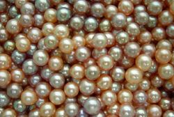 2-5-3-Mm-Small-Size-Freshwater-Pearl-Beads-BLP-0006-