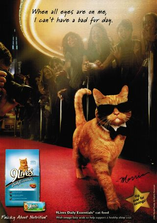 Morris cat red carpet glamour 9lives ad