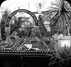 California Oranges World's_Columbian_Exposition-_Horticultural_Building,_Chicago,_United_States,_1893.